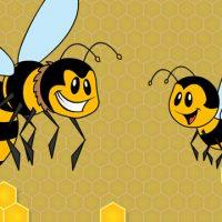 Você sabe distinguir uma vespa de uma abelha?