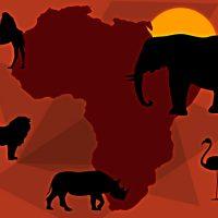 A fauna do continente africano