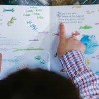 A importância dos livros paradidáticos