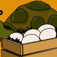 Todo animal que põe ovo é ovíparo?